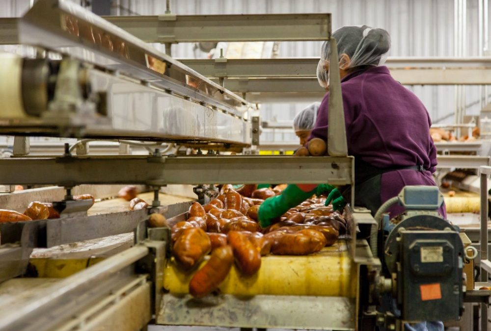 Level 2 Food Safety – Manufacturing